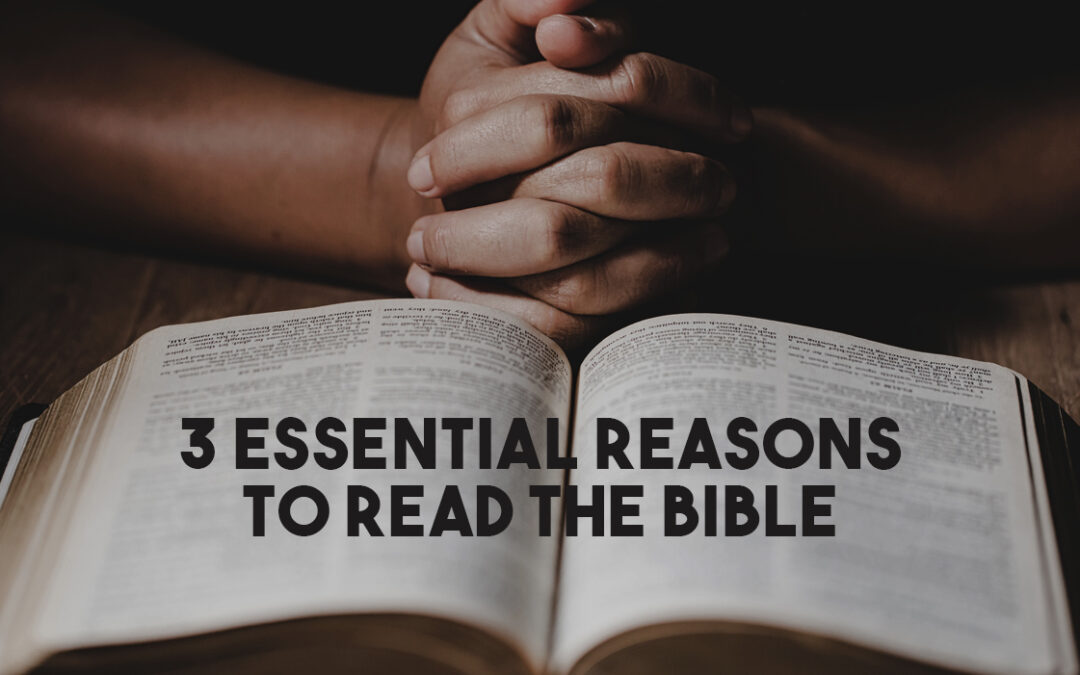 3 Essential Reasons to Read the Bible