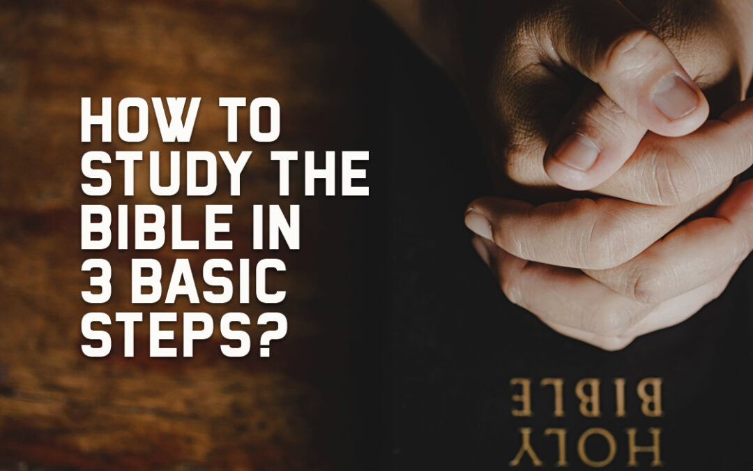 How to Study the Bible in 3 Basic Steps?